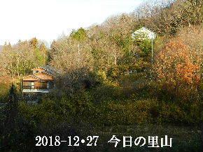 018-12・27 今日の里山は・・・ (3).JPG