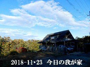 2018-11・23 今日の里山は・・・ (1).JPG