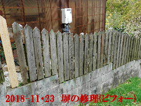 2018-11・23 我が家のスナップ・・・ (3).JPG