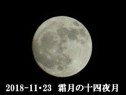 2018-11・23 霜月の十四夜月.JPG