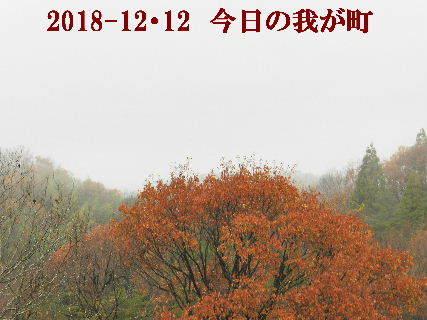 2018-12・12 今日の我が町.JPG