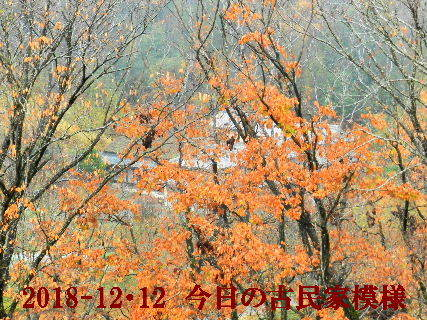 2018-12・12 木立越しの古民家.JPG