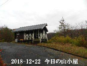 2018-12・22 今日の里山は・・・ (2).JPG
