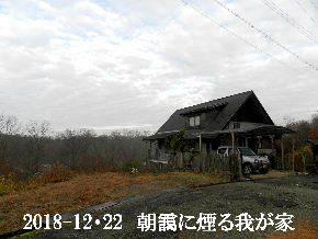 2018-12・23 今日の里山は・・・ (1).JPG