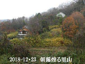 2018-12・23 今日の里山は・・・ (4).JPG