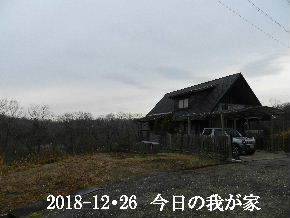 2018-12・26 今日の里山は・・・ (1).JPG