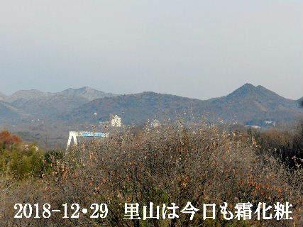 2018-12・29 今日の我が町.JPG