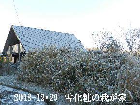2018-12・29 雪化粧の里山 (1).JPG