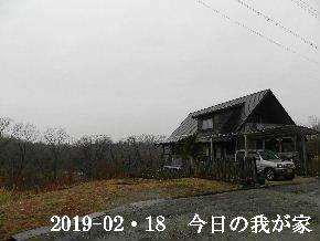 2019-02・19 今日の里山は・・・ (1).JPG