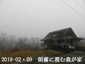 2019-02・20 今日の里山は・・・ (1).JPG