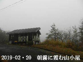 2019-02・20 今日の里山は・・・ (2).JPG