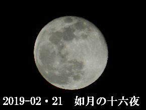 2019-02・21 如月の十六夜 (2).JPG