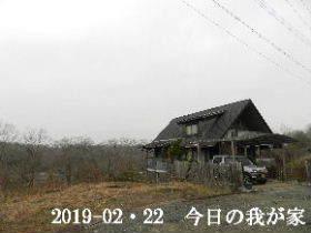 2019-02・22 今日の里山は・・・ (1).JPG