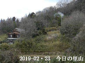 2019-02・23 今日の里山は・・・ (4).JPG