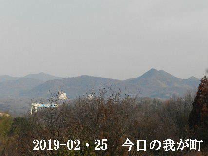 2019-02・25 今日の我が町.JPG