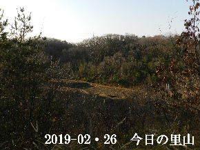 2019-02・26 今日の里山は・・・ (3).JPG