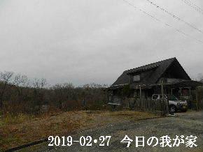 2019-02・27 今日の里山は・・・ (1).JPG