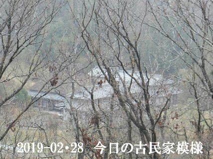 2019-02・28 今日の古民家模様.JPG
