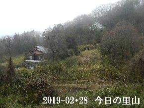 2019-02・28 今日の里山は・・・ (4).JPG