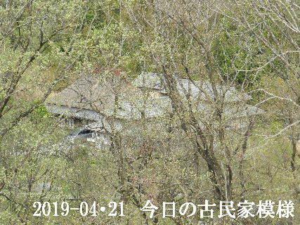 2019-04・21 今日の古民家模様.JPG