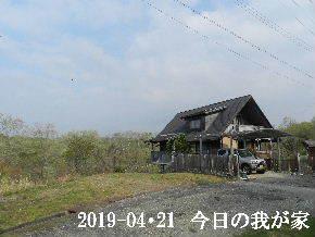 2019-04・21 今日の里山は・・・ (1).JPG