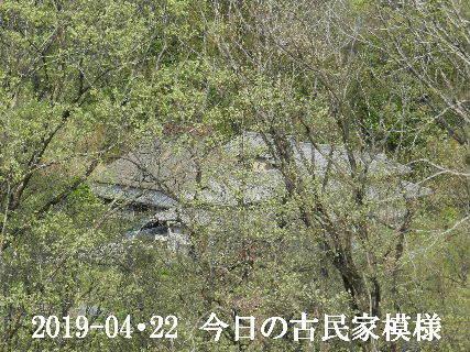 2019-04・22 今日の古民家模様.JPG