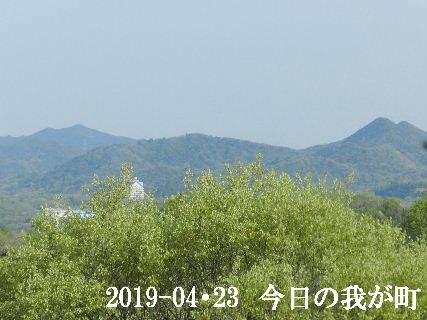 2019-04・23 今日の我が町.JPG