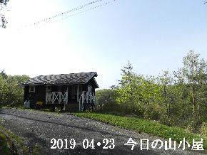 2019-04・23 今日の里山は・・・ (2).JPG