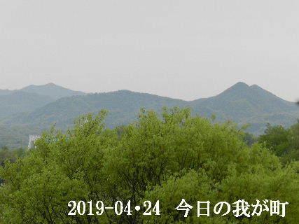 2019-04・24 今日の我が町.JPG