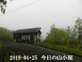 2019-04・25 今日の里山は・・・ (2).JPG