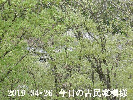 2019-04・26 今日の古民家模様.JPG