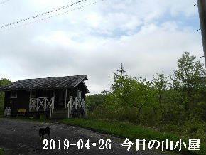 2019-04・26 今日の里山は・・・ (2).JPG