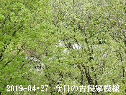 2019-04・27 今日の古民家模様.JPG