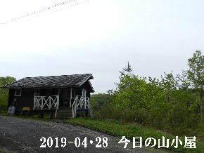 2019-04・28 今日の里山は・・・ (2).JPG