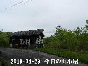 2019-04・29 今日の里山は・・・ (2).JPG
