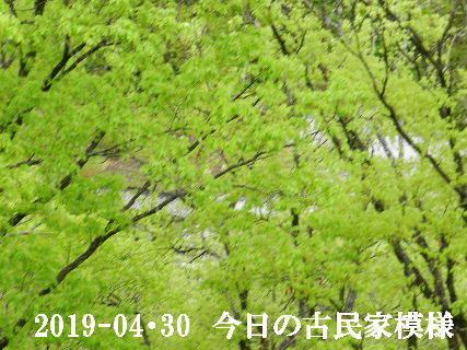 2019-04・30 今日の古民家模様.JPG