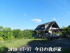 2019-05・07 今日の里山は・・・ (1).JPG