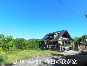 2019-05・08 今日の里山模様・・・ (1).JPG