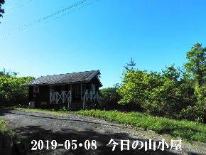 2019-05・08 今日の里山模様・・・ (2).JPG