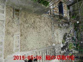 2019-05・08 我が家のスナップ・・・ (4).JPG