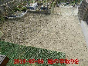 2019-05・08 我が家のスナップ・・・ (5).JPG