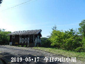 2019-05・17 今日の里山模様・・・ (2).JPG