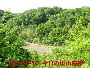 2019-05・17 今日の里山模様・・・ (3).JPG