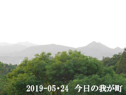 2019-05・24 今日の我が町.JPG