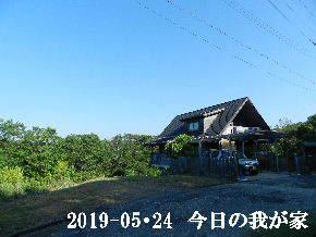 2019-05・24 今日の里山模様・・・ (1).JPG