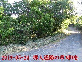 2019-05・24 今日の里山模様・・・ (4).JPG