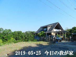 2019-05・25 今日の里山模様・・・ (1).JPG