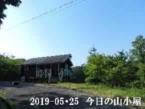 2019-05・25 今日の里山模様・・・ (2).JPG