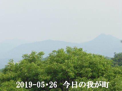 2019-05・26 今日の我が町.JPG