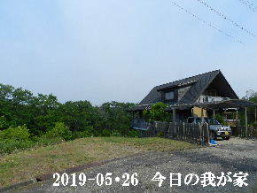 2019-05・26 今日の里山模様・・・ (1).JPG